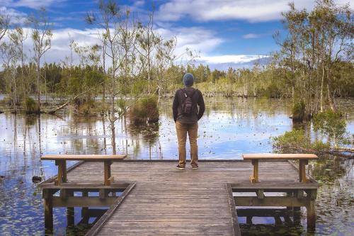 Cattai Wetlands Photographs