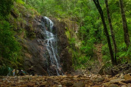 Port Macquarie Waterfalls